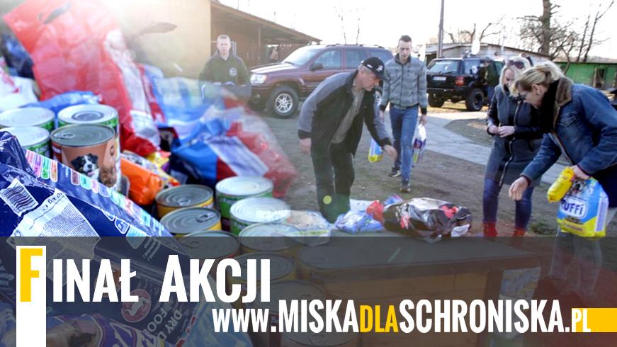 VIDEO | Finał akcji MISKAdlaSCHRONISKA