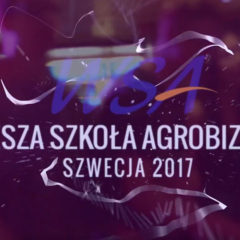 VIDEO | SZWECJA